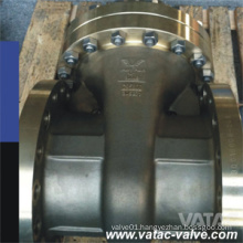 Stainless Steel/Ss/S. S A351 CF8m/Ss316/A182 F316 300# Gate Valve