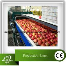 Linha de produção automática de suco de maçã