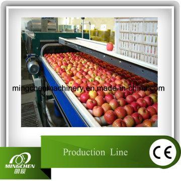 Chaîne de production automatique de jus de pomme de puissance