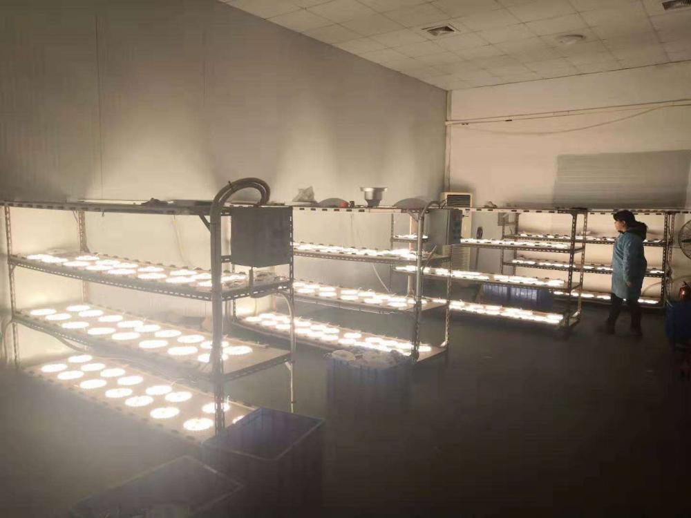 Yupdeng Lighting Company