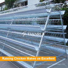 Hot Selling Classic A Type Automatic Chicken Egg Laying Equipment
