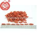 Getrocknete Goji Beeren 380 Körner / 50G Ningxia Goji Beere Trockenfrucht Getrocknete Wolfberry Nutriton