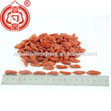 Import goji berries Chinese goji berries 250/280/350/380/500/750 for sale