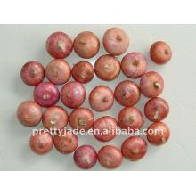 Chinesischer Frischer Roter Zwiebelproduzent