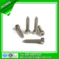 China Leading Hardware Factory Stainless Steel Hex Socket Head Cap Screws