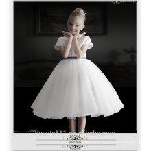 Baby Princess Dress Girls Petal Dress Skirt Tutu skirts wholesale flowers full moon ED698