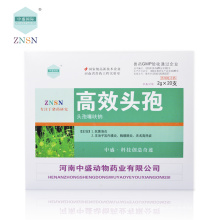 Цефтиофура гидрохлорида 5% раствор для инъекций используется для лечения бактериальных респираторных заболеваний, вызываемых патогенными бактериями