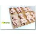 ANATOMY14(12452) Demonstrator Deformities in Infants ,8 pieces in a Series, Anatomy Models > Fetal Malformation Model 12452