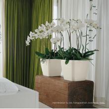 (BC-F1035) Diseño de moda de plástico auto-riego Flower Pot