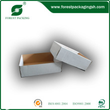 White Paperboard Display Box with Top and Bottom