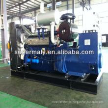 200kw Dieselgenerator mit Baldachin, ATS