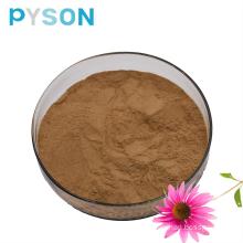 Echinacea Herb Extract Powder