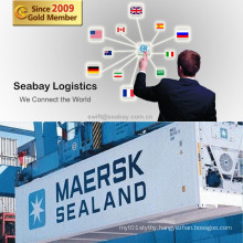 Competitive Shipping Container Cost From China to Worldwide