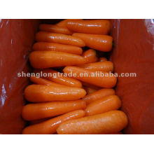 2012 China fresh top quality carrot