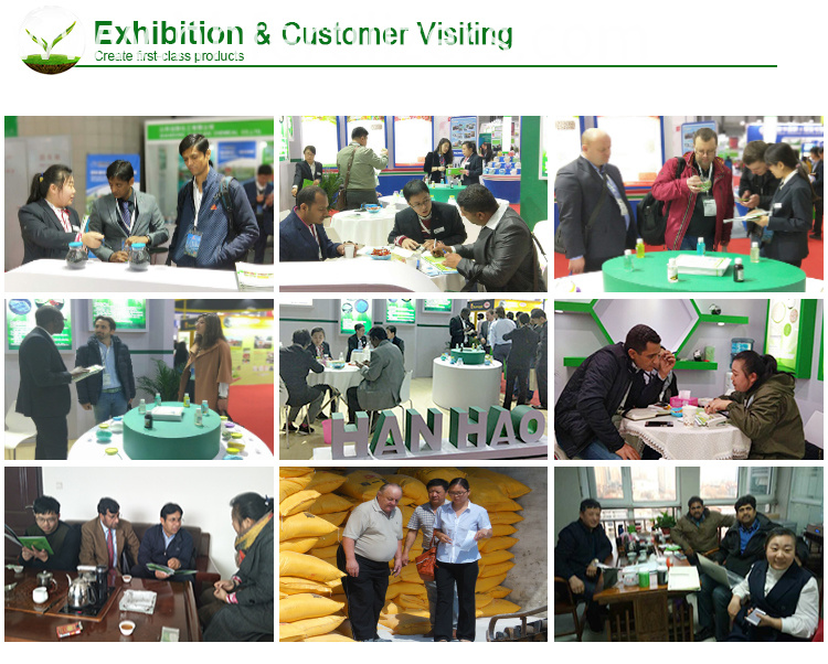 Exhibition & customer visiting