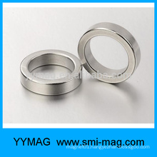 Industrial customized neodymium multipole ring magnet