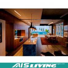 Muebles por encargo de los gabinetes de cocina de la chapa (AIS-K310)
