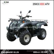 Jianshe 250ccm EEC Quad Big Power 10inch Rad