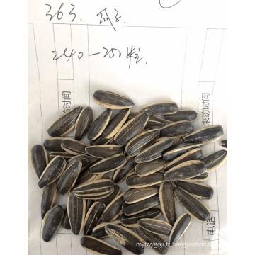 2017 nouvelle graine de tournesol blanc de graine de tournesol graines de tournesol hybrides pour la consommation humaine