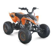 MOTOR DE QUAD 150CC ATV BUGGY NIÑOS DE HUMP