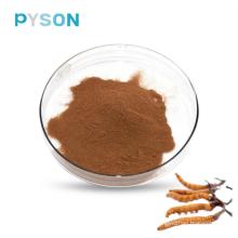 Cordyceps Mycélium Poudre 7% UV