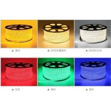 High Brightness 220V SMD 5730 LED Rope Light for Christmas Light