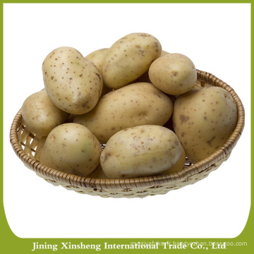 Prix frais de la patate douce