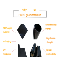 fish and shrimp pond liner HDPE geomembrane