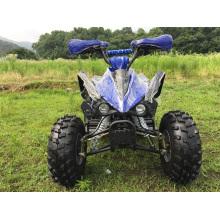 Спортивные 110cc квад ATV с полной автоматической Gears для детей