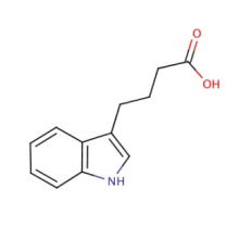 98% MIN 3-Indolebutyrique acide CAS NO.133-32-4