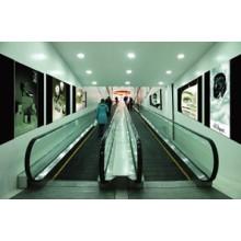 2015 Nouveau produit Déménagement Walk Ascenseur de FUJI Technology (12 ')