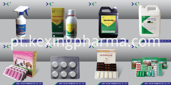 Oxytetracycline Tablet Chicken