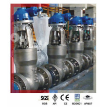 Power Plant 550degc High Temperature Wc9 Gate Valve (900lb)