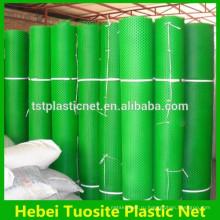Зеленый пластиковый МТ экструдированные сетки/пластмасса обычная чистая