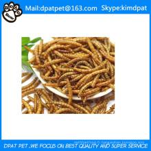 Vers de farine séchée à prix réduit pour la volaille Aliments pour animaux de compagnie