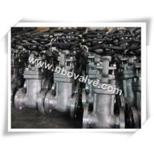 """Válvula de porta forjada tipo fole forjada de 6 """"(ZW48H-300LB)"""
