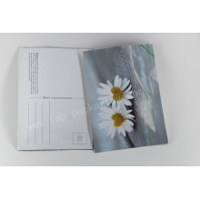 Greeting Card Paper Bag/ Packaging Bag/Postcard Packaging Bag