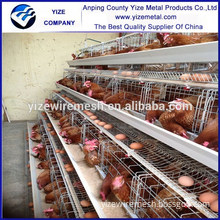 Animal chicken farm tools and equipment and their uses (made in China)