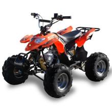 Маленькие дети 50cc, гонки на квадроциклах ATV (MDL GA002-5)