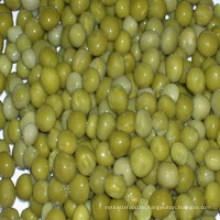 Konservierte grüne Erbsen mit trockenem Material / frischem Material / in Dosen / in Glasglas