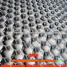Blende 50 * 50mm Carbon Steel 0Cr13 Schildkröte Shell Mesh (Fabrik)