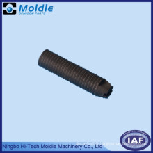 Plastic Injection Molding for Screw