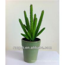 Plantas suculentas artificiales Mini Cactus artificial para venta al por mayor con precio feliz