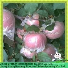 Plastik gepackter Apfel fuji