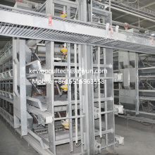 H Type Chicken Layer Battery Cage for Farm