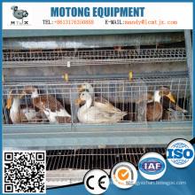 Equipos de alimentación de pato de huevo inteligentes de varios pisos
