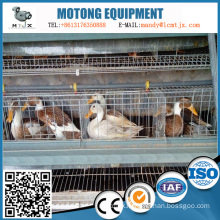 Multi-storey intelligent feeding egg duck cage equipment