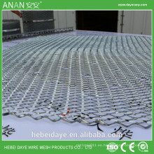 Proveedor de China galvanizado hierro Malla de yeso con relieve