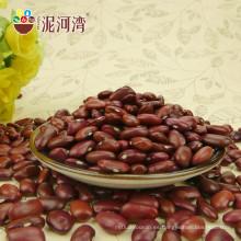 2012 nueva cosecha a granel orgánico rojo oscuro grano de riñón tipo largo