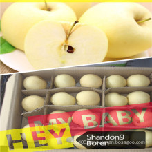 2015fresh Golden Apple in China with Reasonable Price